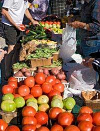 Finding Organic Food Abroad